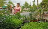 Phụ nữ thị trấn Tân Thạnh: Bảo vệ môi trường bằng những việc làm thiết thực