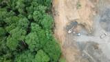 Mỗi phút thế giới mất đi diện tích rừng tương đương 40 sân bóng đá