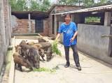 Bến Lức tăng cường các biện pháp hỗ trợ nông dân