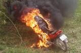 Trộm tiền còn đốt cháy xe của cha mẹ