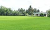 Cần Đước nỗ lực xây dựng huyện nông thôn mới