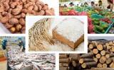 Xuất khẩu nông sản năm 2018 có thể đạt tới 41 tỉ USD