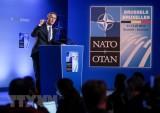 Sau chỉ trích của Mỹ, giới chức NATO khẳng định đoàn kết nội khối