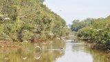 Tìm hướng đi mới cho du lịch sinh thái