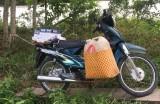 Truy tìm chủ phương tiện và tang vật vận chuyển hàng cấm