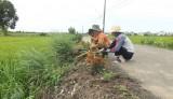 Phụ nữ Bến Lức: Chung tay xây dựng nông thôn mới