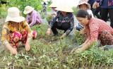 Hội LHPN huyện Cần Đước chăm lo cải thiện đời sống hội viên