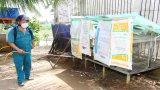 Cần Đước tập trung phòng, chống cúm gia cầm