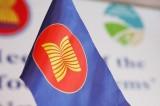 Lễ kỷ niệm 51 năm ngày Ngày thành lập ASEAN tại Nam Phi