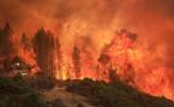 Cháy rừng dữ dội đe dọa hàng nghìn ngôi nhà ở bang California, Mỹ