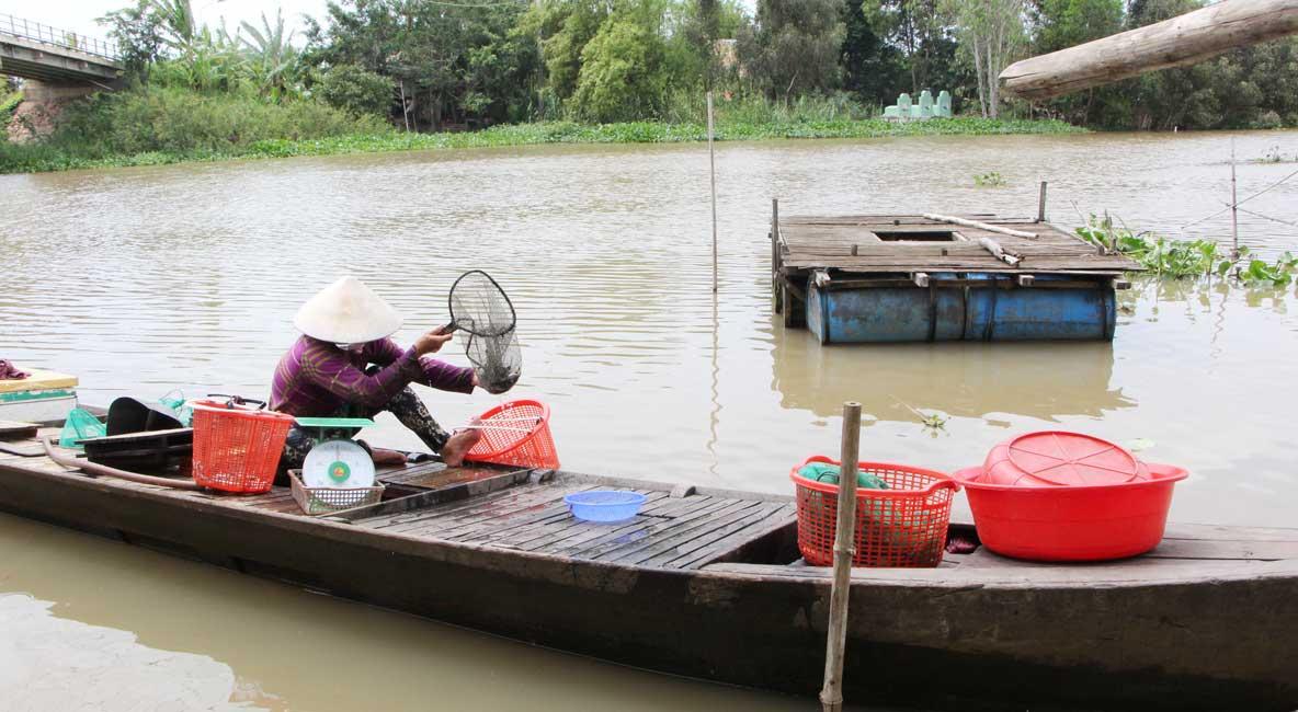 Lũ về, nông dân có thêm thu nhập từ nguồn lợi thủy sản