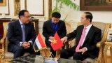 Chủ tịch nước Trần Đại Quang hội kiến Thủ tướng Ai Cập Madbouly