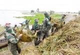 Vĩnh Hưng: Phát huy sức mạnh tổng hợp bảo vệ vững chắc biên giới quốc gia