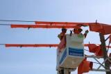 Long An: Lưới điện vận hành thông suốt dịp lễ Quốc khánh 2/9