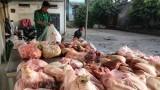Nghị định mới tăng mức xử phạt vi phạm an toàn thực phẩm