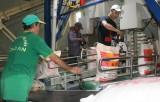 """Doanh nghiệp phấn khởi với Nghị định """"cởi trói"""" xuất khẩu gạo"""