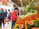 San Hà Foodstore khai trương điểm bán thực phẩm an toàn tại Cần Đước
