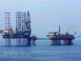 Phát hiện 37 tàu cá vi phạm hành lang an toàn đường ống dẫn khí