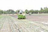 Hợp tác xã nông nghiệp - Hướng đi của nhà nông