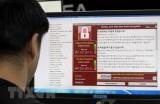 Doanh nghiệp nhỏ là 'miếng mồi ngon' của mã độc Ransomware