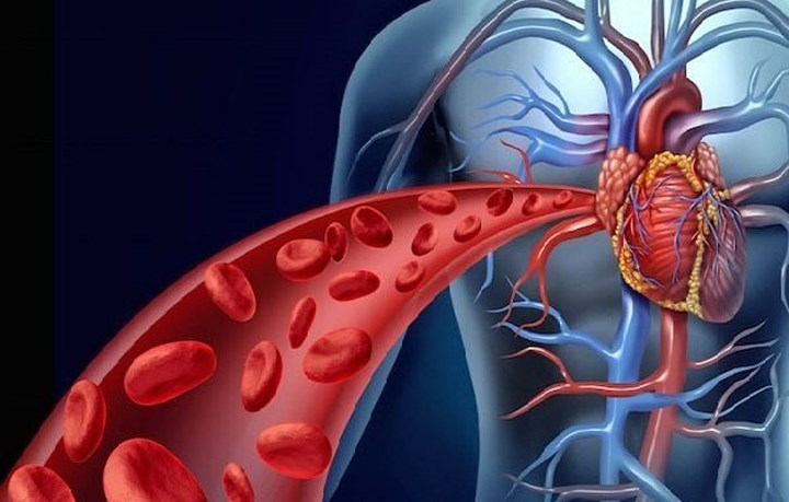 Chứng cao huyết áp, hoặc triệu chứng do bệnh tim gây ra sẽ được cải thiện khi bạn dùng loại quả này hàng ngày bởi chúng rất giàu kali – một chất dinh dưỡng quan trọng cho tim