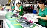Việt Nam xuất khẩu giày dép và túi xách lớn thứ 3 thế giới