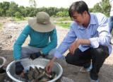 Hướng đi mới trong nuôi trồng thủy sản