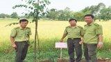 Phát triển lâm nghiệp bền vững