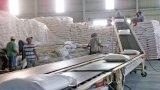 Long An xuất khẩu gạo gần 463 ngàn tấn