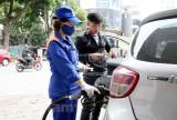 Quỹ bình ổn của Tập đoàn Xăng dầu Việt Nam còn 1.262 tỉ đồng