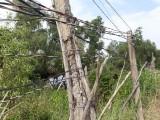 Tân Thạnh: Nguồn điện chập chờn, khó khăn trong sinh hoạt