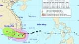UBND tỉnh Long An chỉ đạo ứng phó Bão số 9 và mưa lớn kết hợp triều cường