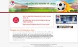 Các trang cung cấp vé trực tuyến của VFF 'tê liệt' trong ngày mở bán
