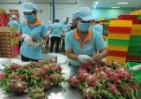 """Sở công thương Long An: Một năm nỗ lực """"xe duyên"""" cho nông sản"""