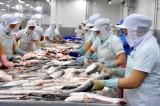 Giá trị xuất khẩu thủy sản đạt 8,1 tỉ USD trong 11 tháng qua