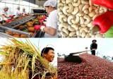 Ngành Nông nghiệp xuất siêu 7,45 tỉ USD trong 11 tháng