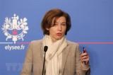 """Pháp tuyên bố liên quân chống IS vẫn còn """"việc cần làm"""" ở Syria"""