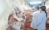 Chủ động phòng, chống dịch bệnh trên gia súc, gia cầm dịp tết