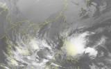 Kịch bản về cường độ và hướng đi của áp thấp nhiệt đới