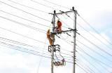 Long An bảo đảm cấp điện trong dịp Tết Dương lịch, Tết Nguyên đán 2019