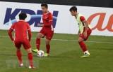 Asian Cup 2019: Cổ động viên luôn sát cánh và kỳ vọng ở tuyển Việt Nam