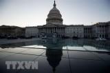 Tổng thống Mỹ không tham dự WEF nếu chính phủ tiếp tục đóng cửa