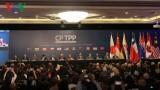 CPTPP chính thức có hiệu lực với Việt Nam từ hôm nay