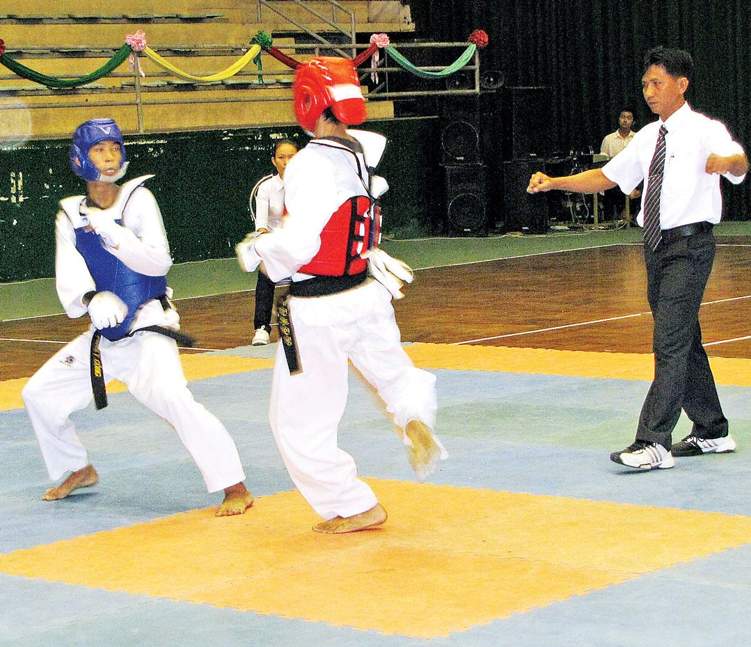 Thi đấu võ thuật tại đại hội