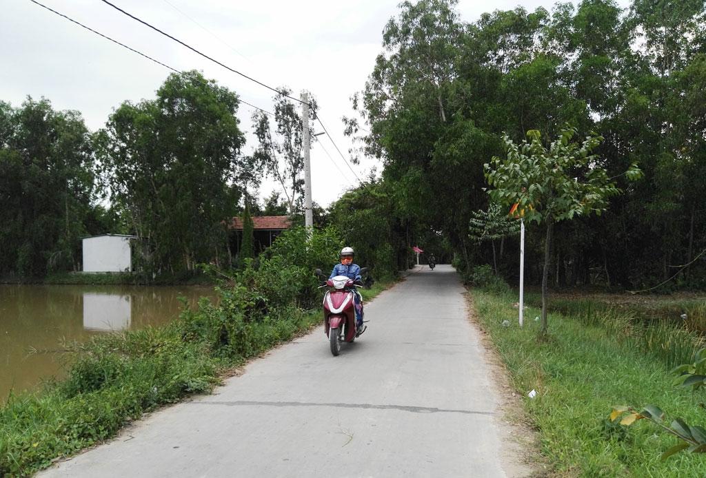 Đường  nông thôn xã Thanh Phú được lắp đèn chiếu sáng với sự đóng góp của nhân dân