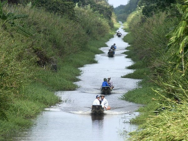 Du khách tham quan khu vườn quốc gia U Minh Hạ. (Ảnh: Thế Anh/TTXVN)
