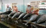 Xuất khẩu hải sản của Việt Nam sẽ tiếp tục tăng, đạt 3,5 tỉ USD năm 2019