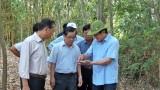 Nguyên Chủ tịch nước - Trương Tấn Sang khảo sát xây cầu giao thông nông thôn tại Đức Hòa