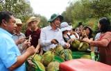 Tham quan khu di tích lịch sử quốc gia thôn cây Xoài và mô hình sản xuất nông nghiệp ứng dụng công nghệ cao