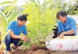 Tuổi trẻ góp sức xây dựng quê hương